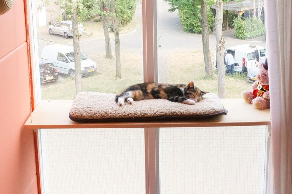 Comfortabele DIY vensterbank voor je kat!