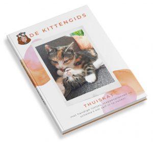 De Kittengids THUISKAT e-boek